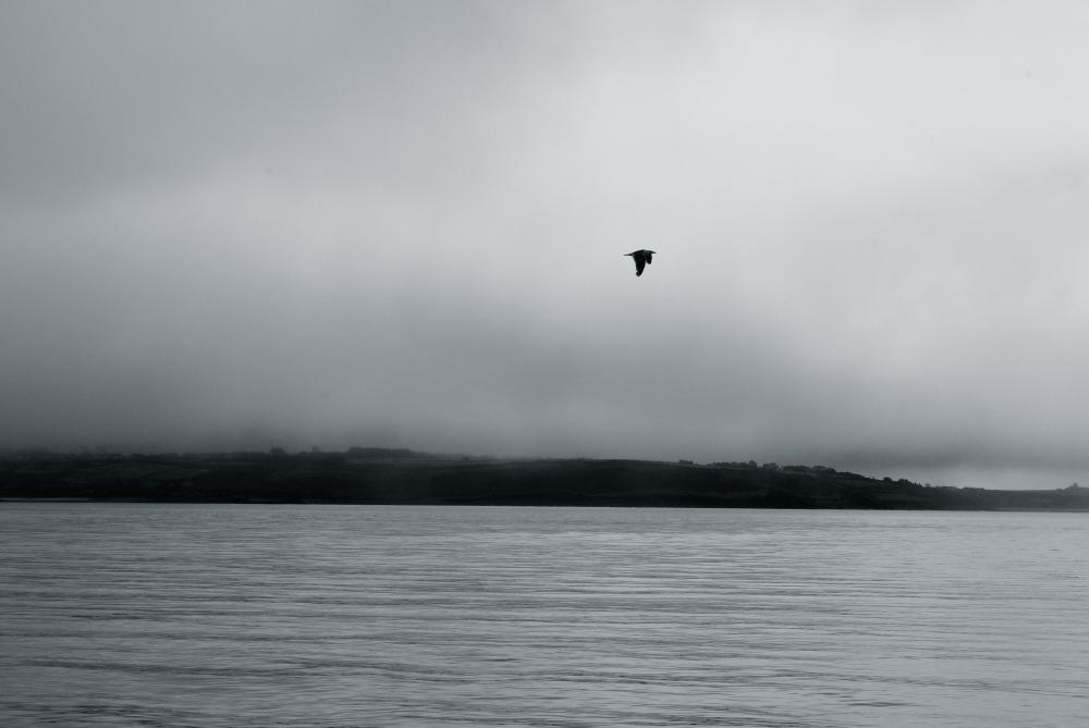 Islands in fog