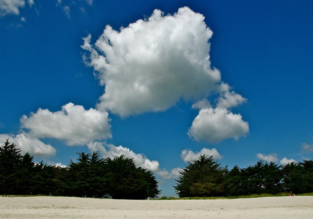 Clouds circling cedars