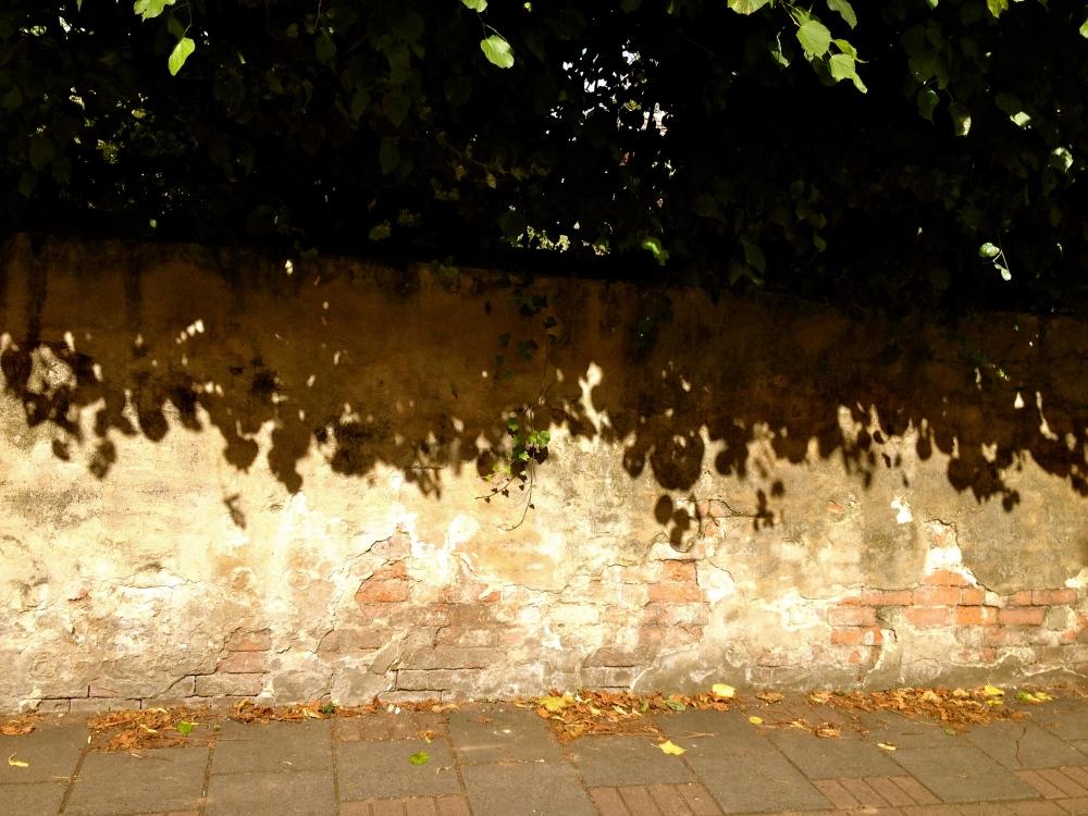 Shaded wall