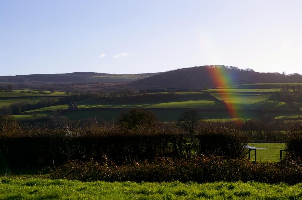 Welsh rainbow