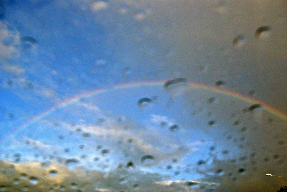 rain/bow