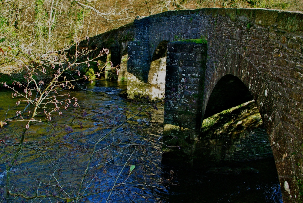 Bridge over the Dart